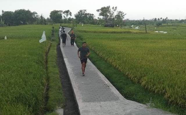 "Subak di Denpasar; Saluran Ditimbun, ""Diserang"" Alih Fungsi Lahan"