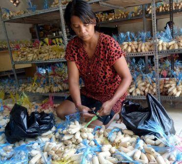 Dodol Penglatan Tembus Pasar Oleh-Oleh Bali