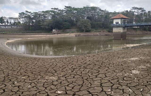Debit Air Turun, Telaga Tunjung Retak-retak, Suplay Subak Terganggu