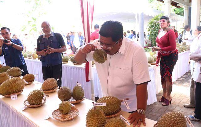 Gelar Kontes di Buleleng, Durian Lokal Terbaik Dapat Hadiah Motor