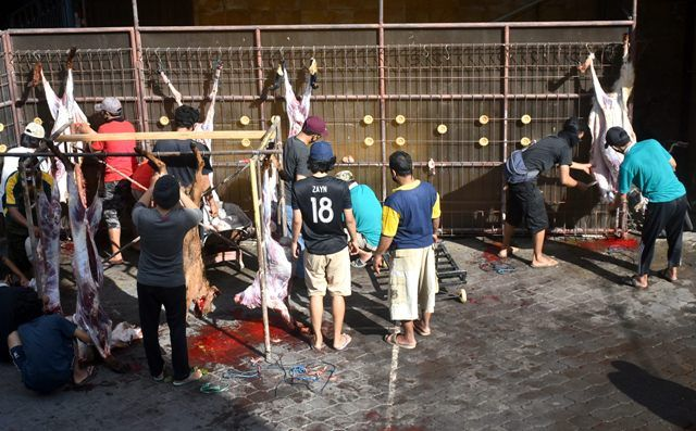 Jumlah Hewan Qurban Turun, LDII Targetkan 10 Ribu Besek