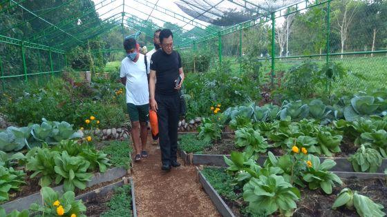 Deputi VII BIN Sambangi Pengolahan Pupuk Kompos di Ubud