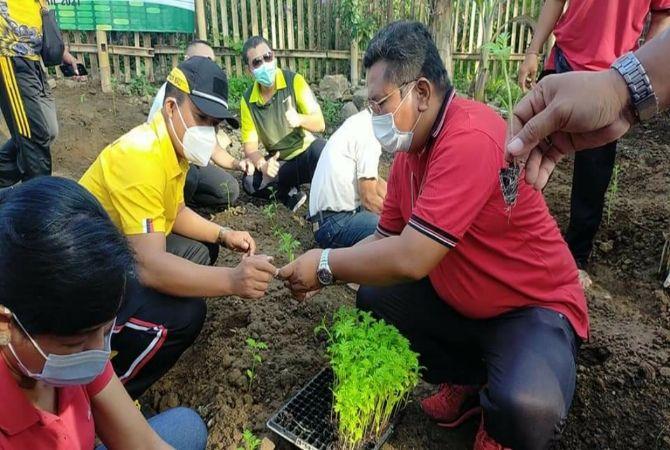 Wujud Ketahanan Pangan, Desa Mas Tanam 3.000 Bibit Tanaman Horti