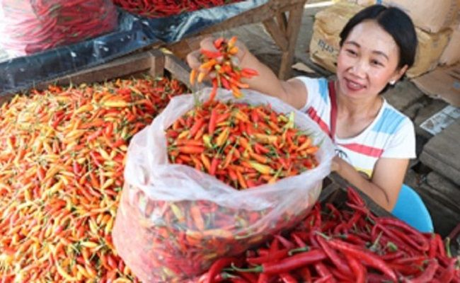harga cabai, cabai rawit merah, cabai besar, Pasar Tradisional, masa tanam mundur, perayaan galungan kuningan,