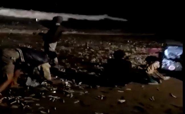ribuan ikan terdampar,pantai batu bolong, warga berebut ikan, ikan lemuru, fenomena langka, fenomena tahunan, gempa 6,0 RS, BMKG III Denpasar,
