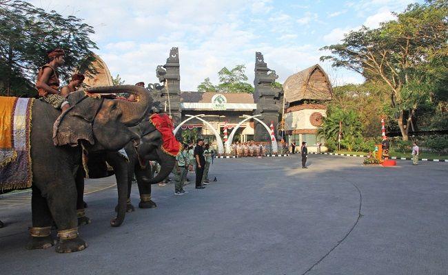 hut ri, satwa langka, bali safari & marine park, pernak pernik kemerdekaan