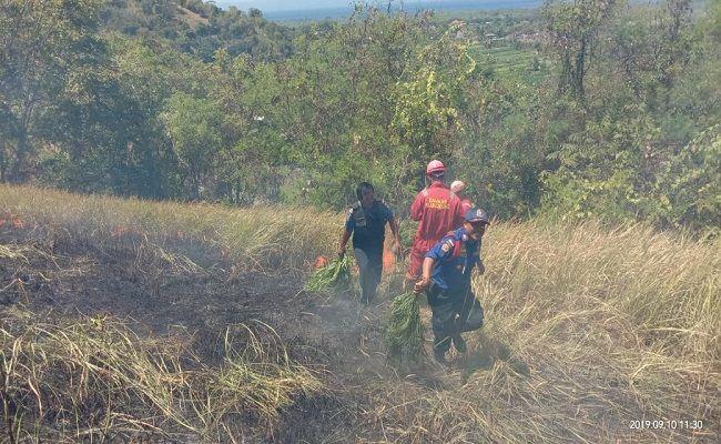 kemarau panjang, objek wisata bukit belong, kebakaran lahan, satpol pp klungkung