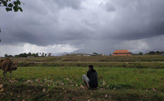 kabar cuaca, kabupaten jembrana, masa transisi, musim kemarau, musim hujan, bmkg negara
