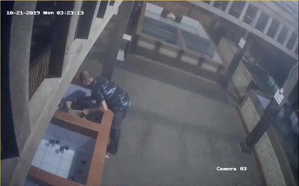 pencurian penyu, warga asing, konservasi penyu, Polsek Densel, rekaman CCTV pencurian,