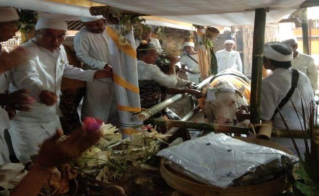 prosesi mineh, pura geriana kangin, ritual sakral, air susu lembu, campuran sanganan catur
