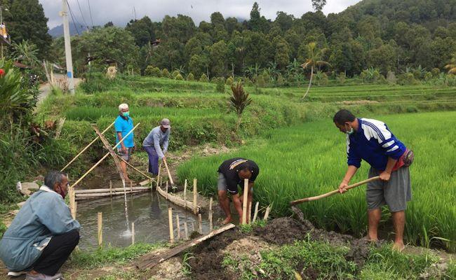 Di tengah pandemi Covid-19, masalah pangan menjadi perhatian. Termasuk pertanian di Buleleng diharap jadi tulang punggung ketahanan pangan.