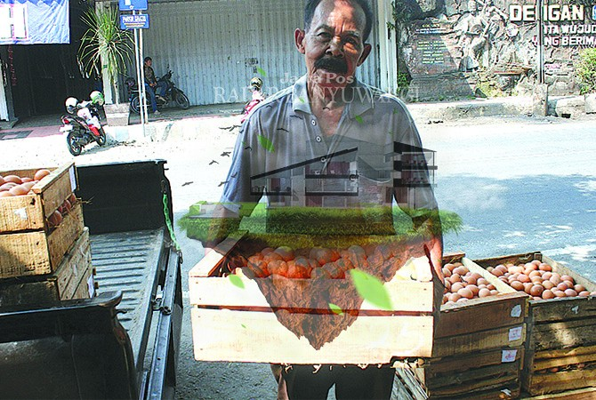 HARGA NORMAL: Agen mengantarkan telur pesanan ke toko di Desa Genteng Kulon, Kecamatan Genteng, kemarin (5/6).