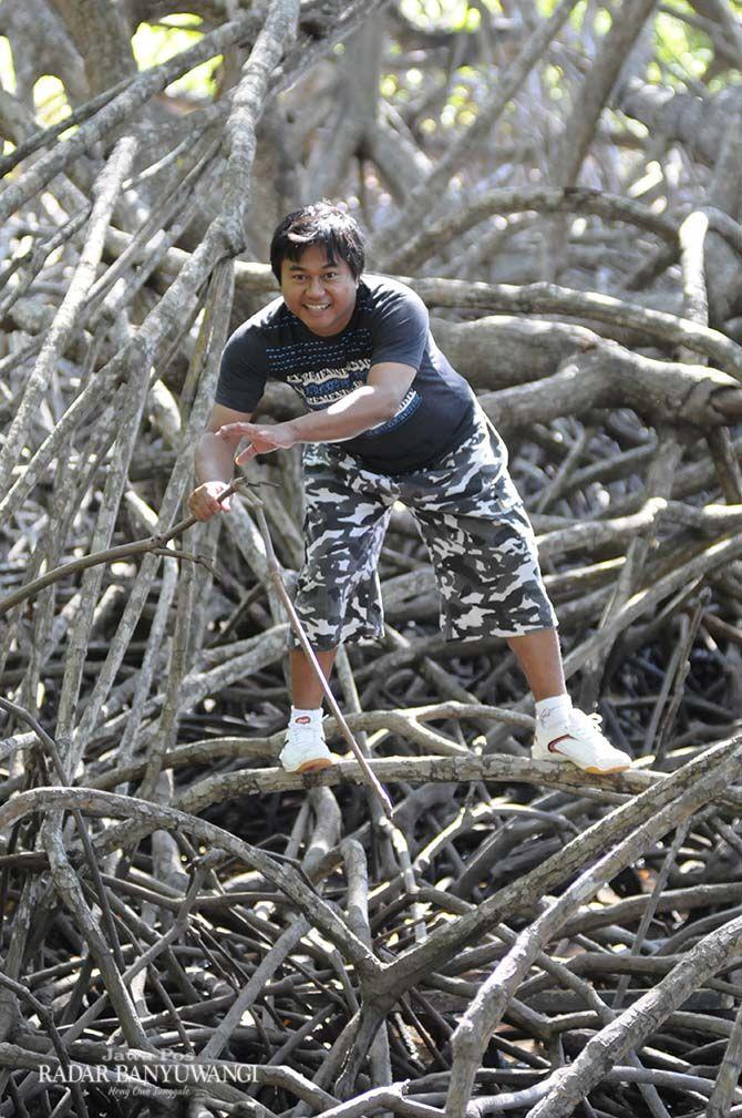 Menikmati hutan mangrove yang masih alami di Pantai Bama, Taman Nasional Baluran.