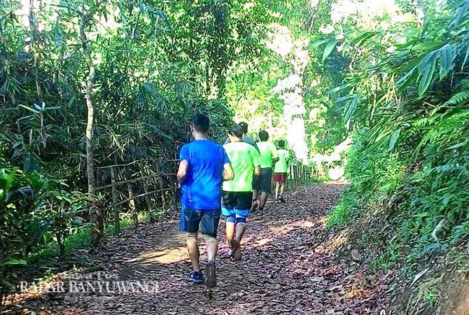 JALUR HUTAN: Area yang akan dilalui para pelari di event Gombengsari Plantation Run melintasi kawasan pinus dan mahoni.