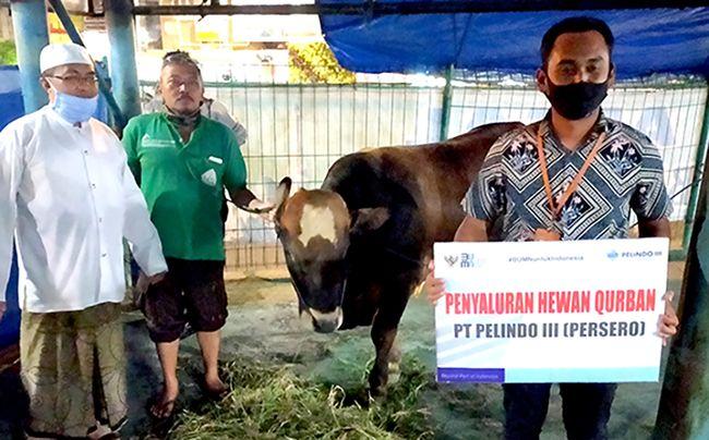 SIMBOLIS:  Pelindo III Tanjung Wangi menyerahkan hewan kurban di Masjid Agung Baiturrahman Banyuwangi pada Rabu (29/7)