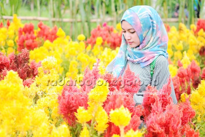 ALA BELANDA: Yuni, salah satu pengunjung saat menikmati kebun bunga di Desa Sukoharjo, Kecamatan Bancar.