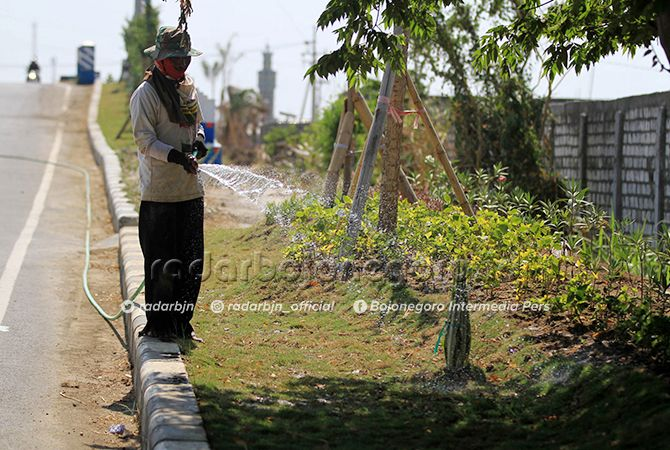 TANAMAN KOTA: Pekerja menyiramkan air ke tanaman yang sedang dalam masa pemeliharaan selama enam bulan.