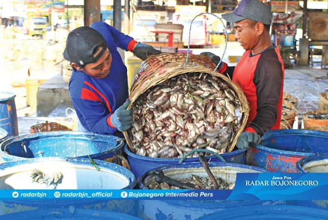 PERLU COLD STORAGE: Ikan tawar di Pasar Ikan Lamongan harganya anjlok karena stok melimpah.
