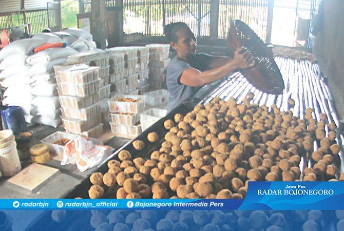 MERANA: Pekerja menata tahu bulat. Saat ini produsen tahu kian terjepit dengan harga kedelai impor tembus Rp 11.000