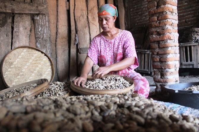 Aktivitas produksi kacang goring pasir di tempat usaha milik Suratman.