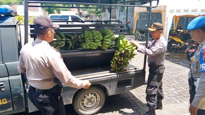 Barang bukti pisang yang diamankan petugas Polsek Tembelang.