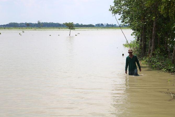 Persawahan di Dusun Karandegan, Desa Kedungmlati, Kecamatan Kesamben berubah seperti tambak akibat banjir.