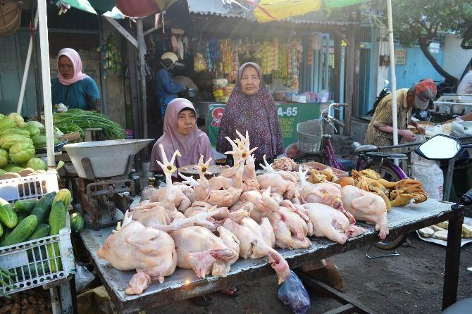 Aktivitas pedagang ayam di Pasar Pon Jombang.