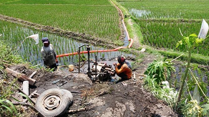 Sejumlah petani di Desa Bugasurkedaleman, Kecamatan Gudo kesulitan mendapat pengairan sawah. Dalam dua minggu terakhir, mereka harus melakukan pengeboran untuk mencari sumber air.