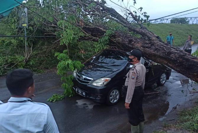 RINGSEK: Kondisi mobil Toyota Avanza ringsek akibat tertimpa pohon penduh jalan di jalan Raya Ploso, Sabtu (19/6) kemarin.