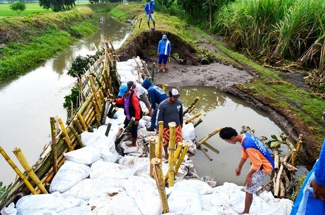 banjir purwoasri