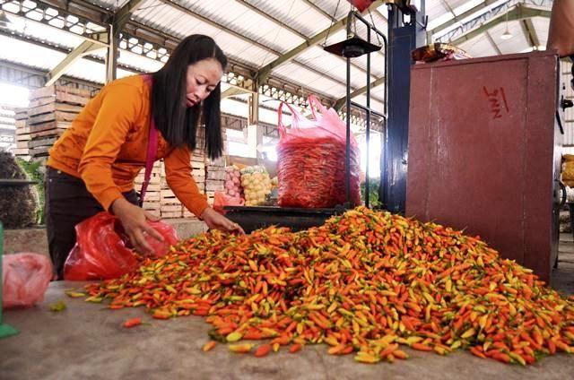 HARGA TURUN: Pedagang cabai rawit di Pasar Induk Pare. Saat ini, stok di Kabupaten Kediri cukup melimpah karena ada kiriman stok dari luar kota (21/11).