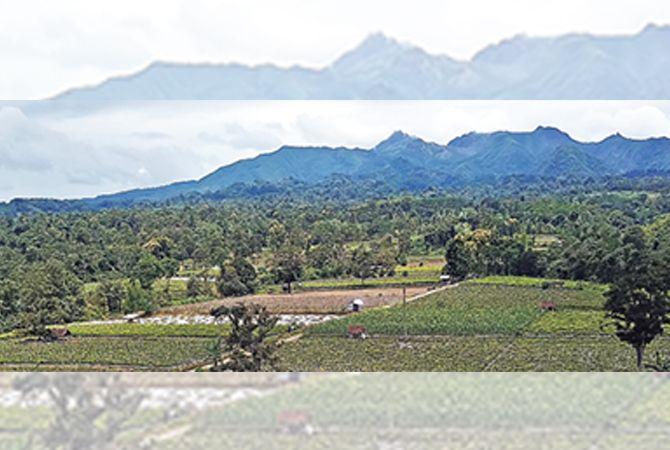 SUBUR : Lereng utara Gunung Kelud yang dari dulu terkenal sebagai kawasan agraris.
