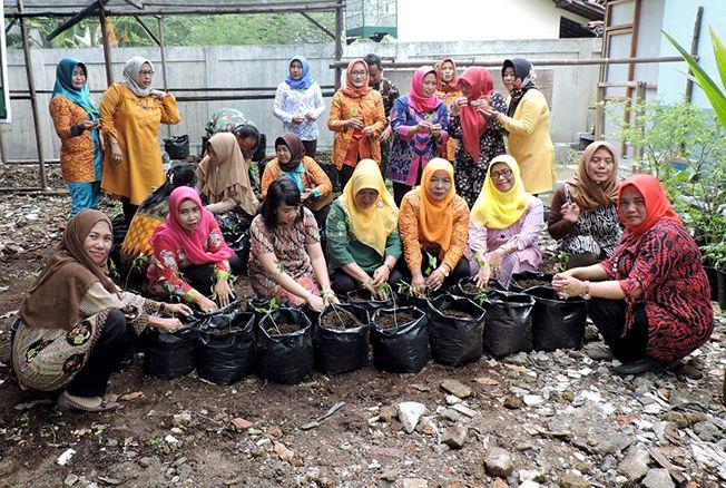 MENANAM: Persit KCK Cabang XXXVIII Dim 0717/Purwodadi menanam sayuran di sekitaran makodim.