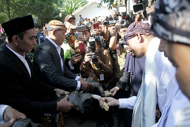 LANGGENGKAN TRADISI: Bupati Kudus Muhamamd Tamzil dan Wakil Bupati Kudus Muhammad Hartopo memberi makan bulus yang dikeramatkan dengan kupat dan lepet dalam acara tradisi bulusan kemarin.