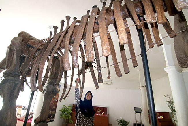 SEGERA DIBANGUN: Gubernur akhirnya menyetujui pembangunan Museum Patiayam Jekulo Kudus untuk pengembangan destinasi wisata edukasi dan sejarah.