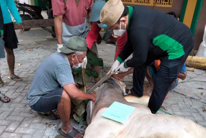 KURBAN SAPI: Warga perumahan Sambak Indah Kelurahan Danyang, Kecamatan Purwodadi menyembelih sapi untuk hari raya Idul Adha, Rabu (21/7) untuk dibagikan kepada warga.