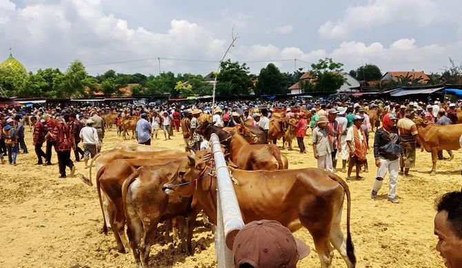 RAMAI: Pembangunan pasar hewan di Desa Aeng Sareh, Kota Sampang, dipertanyakan.