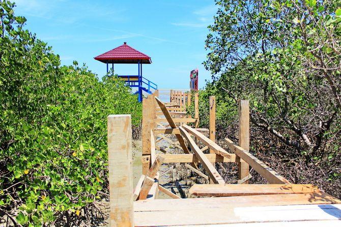 BELUM RAMPUNG: Pembangunan jembatan penghubung antargazebo di destinasi wisata mangrove, Dusun Bangkal, Desa Lembung, Kecamatan Galis.