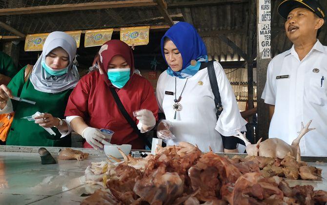 Petugas Dinas Pertanian mengecek kandungan daging ayam di salah satu lapak pedagang di Pasar Raya Mojosari, Kabupaten Mojokerto.