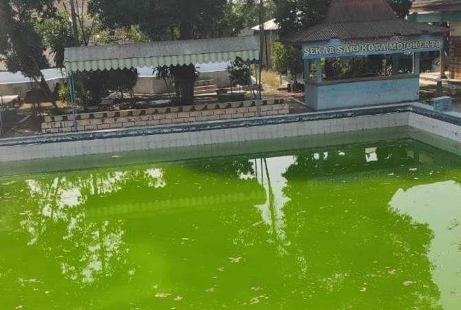 Kolam pemandian Sekar Sari tampak terbengkalai. Sehingga rawan menjadi sarang nyamuk penyebar penyakit demam berdarah.