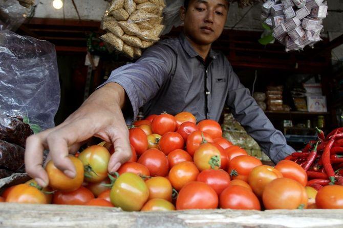 Harga tomat di pasar Tanjung Anyar, Kota Mojokerto anjlok sejak sebulan terakhir.