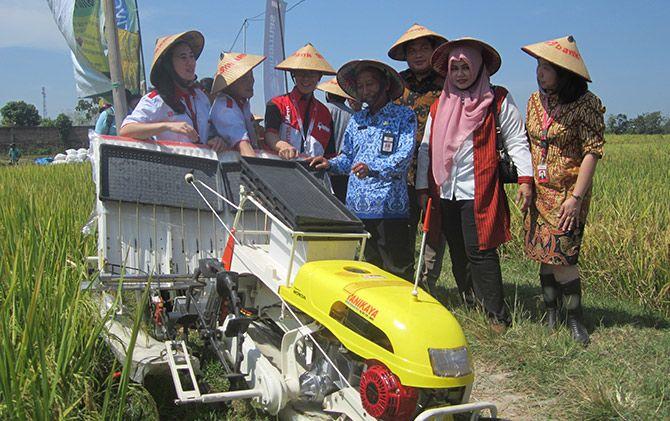KETAHANAN PANGAN: Bantuan alat transplater untuk meningkatkan produksi petani.