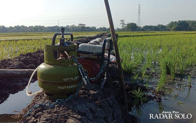 DILEMATIS: Petani Sragen menggunakan gas elpiji melon untuk bahan bakar mesin sedot air.
