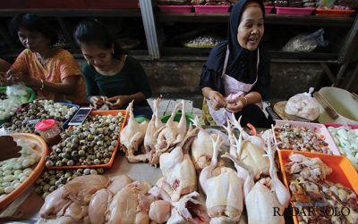 Picu Inflasi, Harga Daging Ayam Meroket