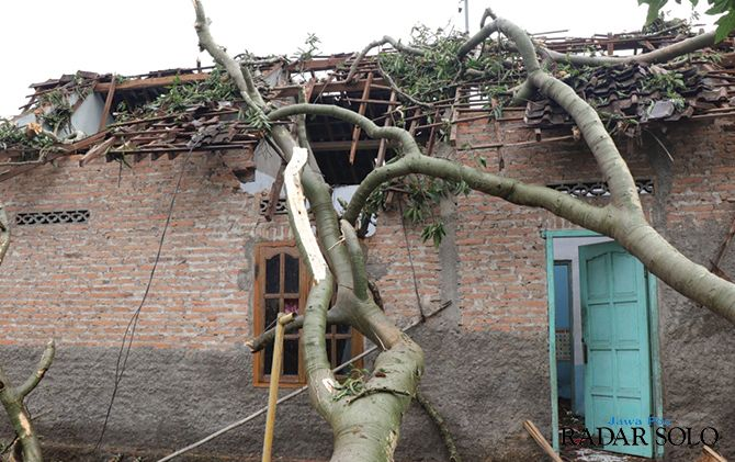 TERDAMPAK ANGIN RIBUT: Rumah milik warga tertimpa pohon tumbang di kawasan Umbul Leses, Desa Jenengan, Kecamatan Sawit, kemarin (10/1).
