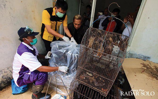 CEGAH PENYAKIT: Ratusan kelelawar yang dijual di Pasar Burung Depok dimusnahkan dengan cara dibakar, kemarin (14/3).