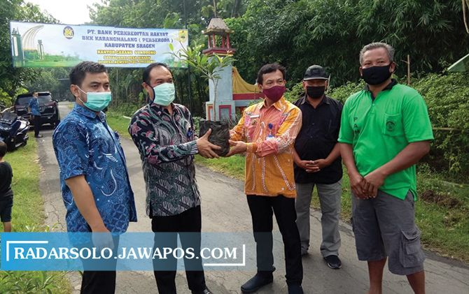 BPR BKK Karangmalang Beri 100 Bibit Pohon Sawo di Desa Newung
