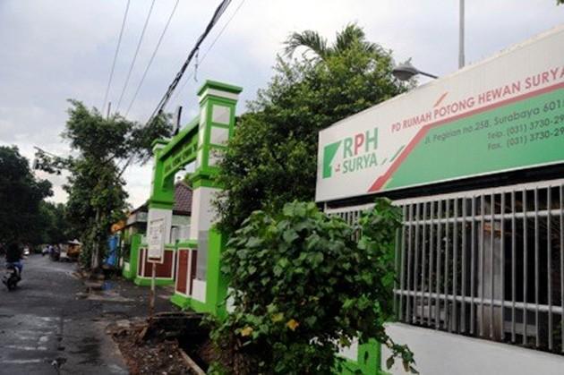 BUMD: RPH Pegirian milik pemkot Surabaya