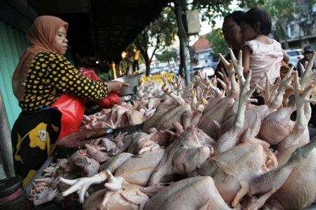 MASIH STABIL: Pedagang daging ayam sedang melayani pelanggan di Pasar Keputran, Surabaya. Dinas Perdagangan Surabaya terus melakukan monitoring harga
