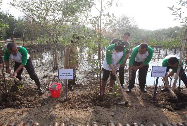 SERU: Siswa disabilitasi menanam pohon mangrove bersama petugas dan direksi PP Property di kawasan hutan bakau Gunung Anyar Tambak, Surabaya, Selasa (
